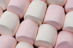 Pink And White Marshmallows Stock Image