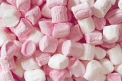Pink and White Marshmallows Full Frame. Little pink and white marshmallows, in full frame Royalty Free Stock Images