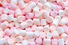 Pink and white mini marshmallows Royalty Free Stock Image