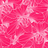 Pink and white orchid seamless pattern Royalty Free Stock Images