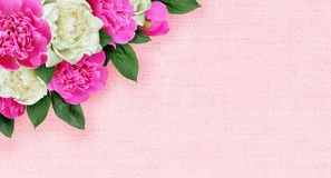 Pink and white peonies flowers corner arrangement on canvas Stock Photos