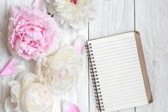 Pink and white peony flowers with blank lined notebook on white wooden table