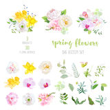 Pink and  white peony, yellow daffodils, wild rose, white poppy, Stock Images