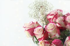 Pink and White Roses with Babys Breath. Beautiful bouquet of  red and white roses with baby`s breath. Selective focus with shallow depth of field Stock Photos