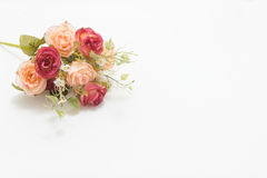 Pink and white roses. Background, shallow depth of field. Retro vintage Stock Photos