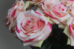 Pink and white roses. Beautiful pink and white cloth rose bouquet Royalty Free Stock Photography