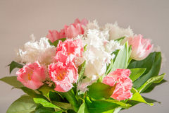 Pink and White roses bouqet Stock Photos