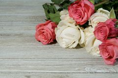 Pink and white Roses on a grey slate Stock Image