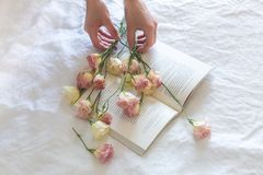 Pink-and-white Roses on Top of Open Book Nestled on White Textile royalty free stock image