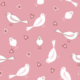 Pink and white seamless bird pattern Stock Images