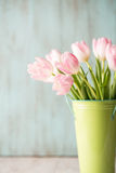 Pink and White Spring Tulips in Green Bucket Vase Stock Image