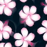 Pink and white tropical flowers on dark leaves seamless pattern Stock Photography