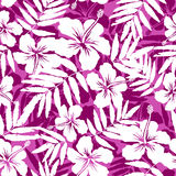 Pink and white tropical flowers silhouettes. Vector seamless pattern Royalty Free Stock Photography