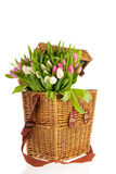 Pink and white tulips in basket Stock Photo