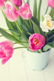 Pink and white tulips on a bucket Stock Images
