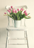 Pink and white tulips on a chair Royalty Free Stock Photo