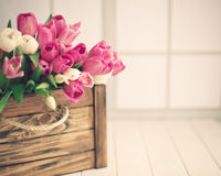 Pink and white tulips on a chest Royalty Free Stock Photo