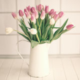 Pink and white tulips on a jar Stock Photo