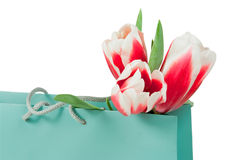 Pink and white tulips in the paper bag Royalty Free Stock Image