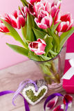Pink and white tulips present ribbon easter birthday Stock Image