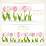 Pink and white tulips on two horizontal banners Stock Images