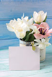 Pink and white tulips and white narcissus flowers in vintage bow Stock Images