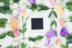 Pink, white and violet flowers Stock Image