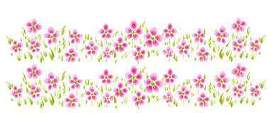 Pink wild flower Stock Images