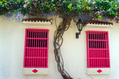 Pink Windows and White Walls Royalty Free Stock Photo