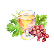 Pink wine glass with vine leaves, grape berries. Watercolor. Pink wine glass with vine leaves and grape berries. Watercolor Stock Photography