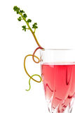 Pink wine with grape leaves. Blush or rose wine glass at a slant isolated over white Stock Images