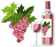 Pink wine with grapes, bottle and glass. Illustration of bottle of pink wine with wine glass and grapes Stock Images