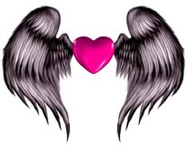 Pink Winged Heart. A hot pink heart with pink tinted feather angel wings Stock Photography