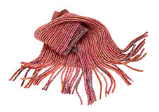 Pink winter scarf with fringe nicely arranged. Royalty Free Stock Photos
