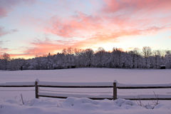 Pink Winter Sky Stock Image