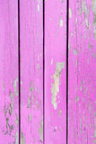Pink wooden fence background Royalty Free Stock Photos