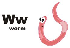 Worm and abc. Pink worm with black word worm and letters w Royalty Free Stock Photo