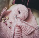 Pink yarn, dried roses and started knitting. Pink woolen yarn lies near dried roses and started knitting Stock Photo