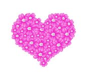 Pink Yarrow Flowers in A Heart Shape Stock Photography