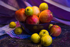 Pink and yellow apples Royalty Free Stock Image
