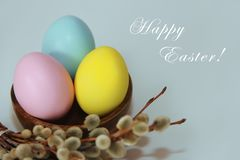 Pink yellow blue eggs against a background of willow and flowers for the Easter holiday royalty free stock photos