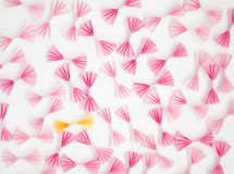 Pink and yellow bows Stock Images