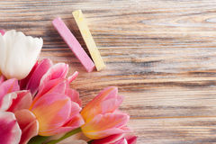 Pink and yellow chalks with tulips Royalty Free Stock Image