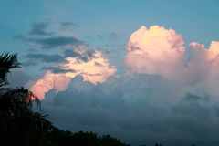 Pink and yellow clouds before a storm with tropical vegetation shilouttes. In the foreground stock photos