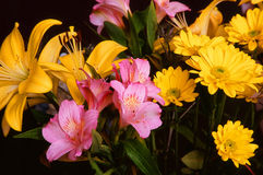 Pink and Yellow Floral Arrangement Stock Photos