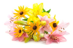 Pink and yellow flowers Royalty Free Stock Images