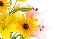 Pink and yellow flowers Stock Photos