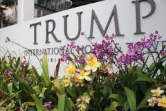 Pink & Yellow Flowers infront of Trump Sign Stock Image