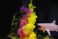 Pink and Yellow Ink Underwater Art Beside Shark Toy royalty free stock images