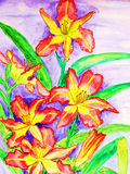 Pink-yellow daily lilies Royalty Free Stock Photo